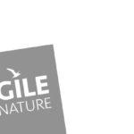 Auf einen Rückblick – Agile by Nature Camp 2017